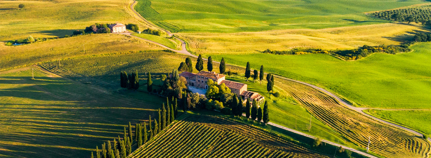 Private excursions and shared tours in Tuscany