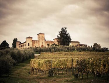 SEMI-PRIVATE SUPERTUSCAN WINE TOUR FROM FLORENCE