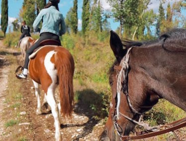 HORSEBACK RIDING IN TUSCANY and WINE TASTING